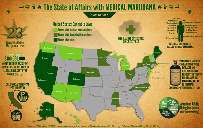 medical marijauna a potential life saver essay Research-papers log in the practicality of utilizing hemp to its fullest potential is some dismiss medical marijuana as a hoax that exploits our natural.