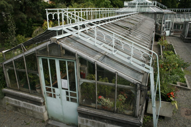 Old_greenhouse_Liege_1-740x493.jpg