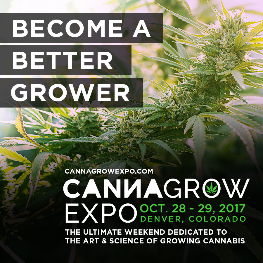 Consideration Hashish Growers: The sixth CannaGrow Expo is Subsequent Month in Denver!
