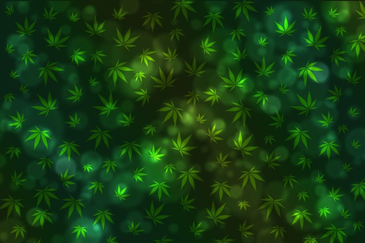 Texture-Bokeh-Background-Marijuana-Cannabis-1574263-740x493.jpg