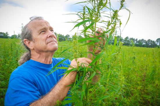 While Washington Questions Cannabis, Industrial Hemp Industry Has Major Support